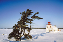 Lighthouse-in-Winter-By-Karl-Berdan
